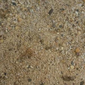 Areia Suja - Marinho
